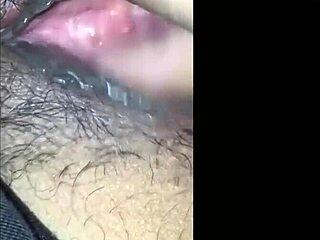 Sex scheide